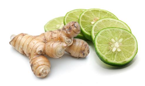 herbal untuk batuk