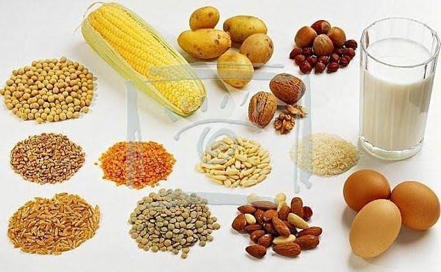 Memilih Makanan Berprotein Untuk Kesehatan Tubuh Artikel Magazine